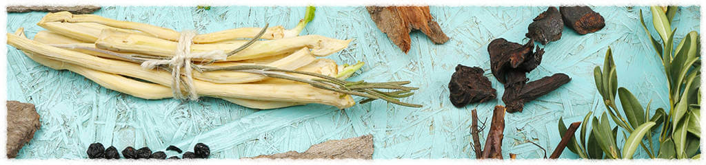 Acupuncture and Chinese Herbal Medicine Treatments at Holistic Health Acupuncture